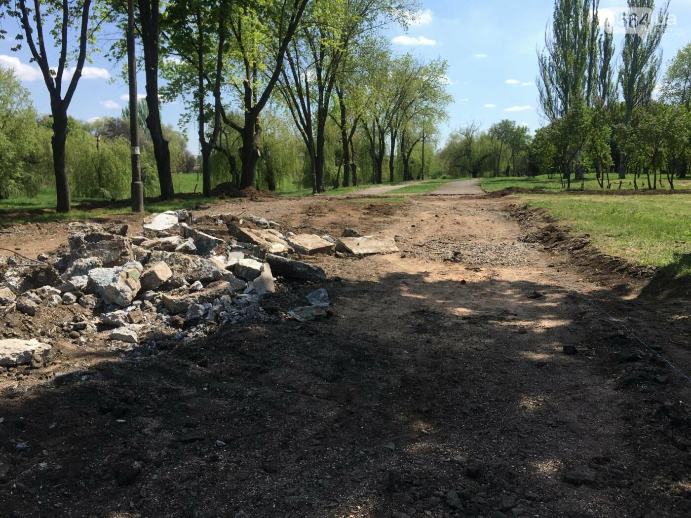 """""""В Европу без мусора!"""": криворожане помогли подготовить парк к Еврофесту (ФОТО), фото-86"""