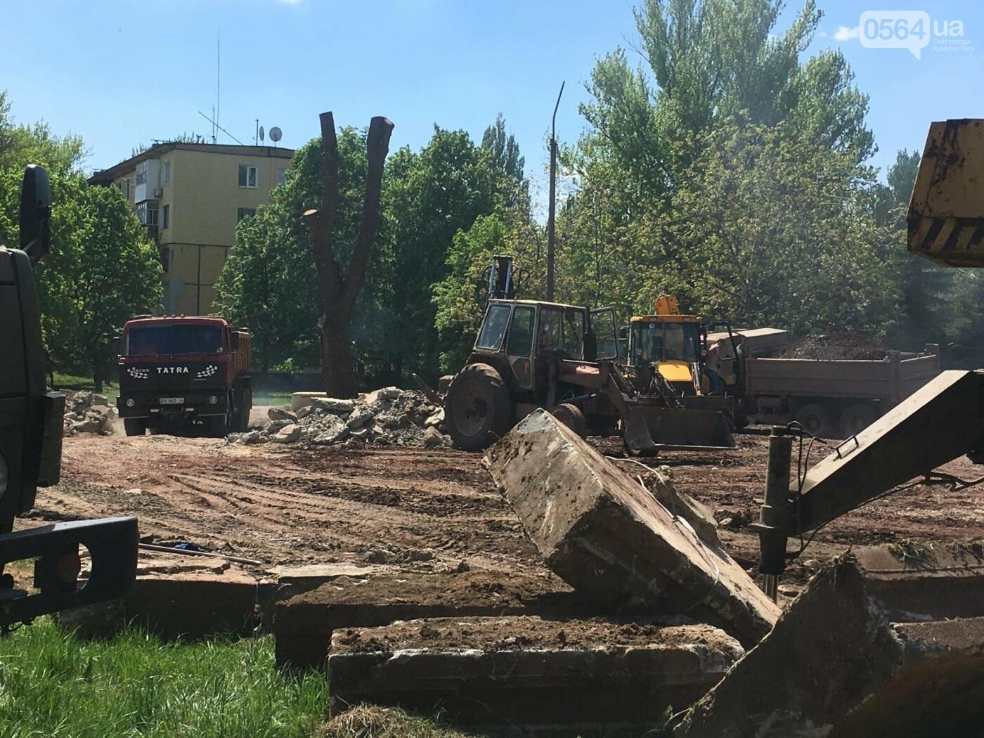 """""""В Европу без мусора!"""": криворожане помогли подготовить парк к Еврофесту (ФОТО), фото-32"""