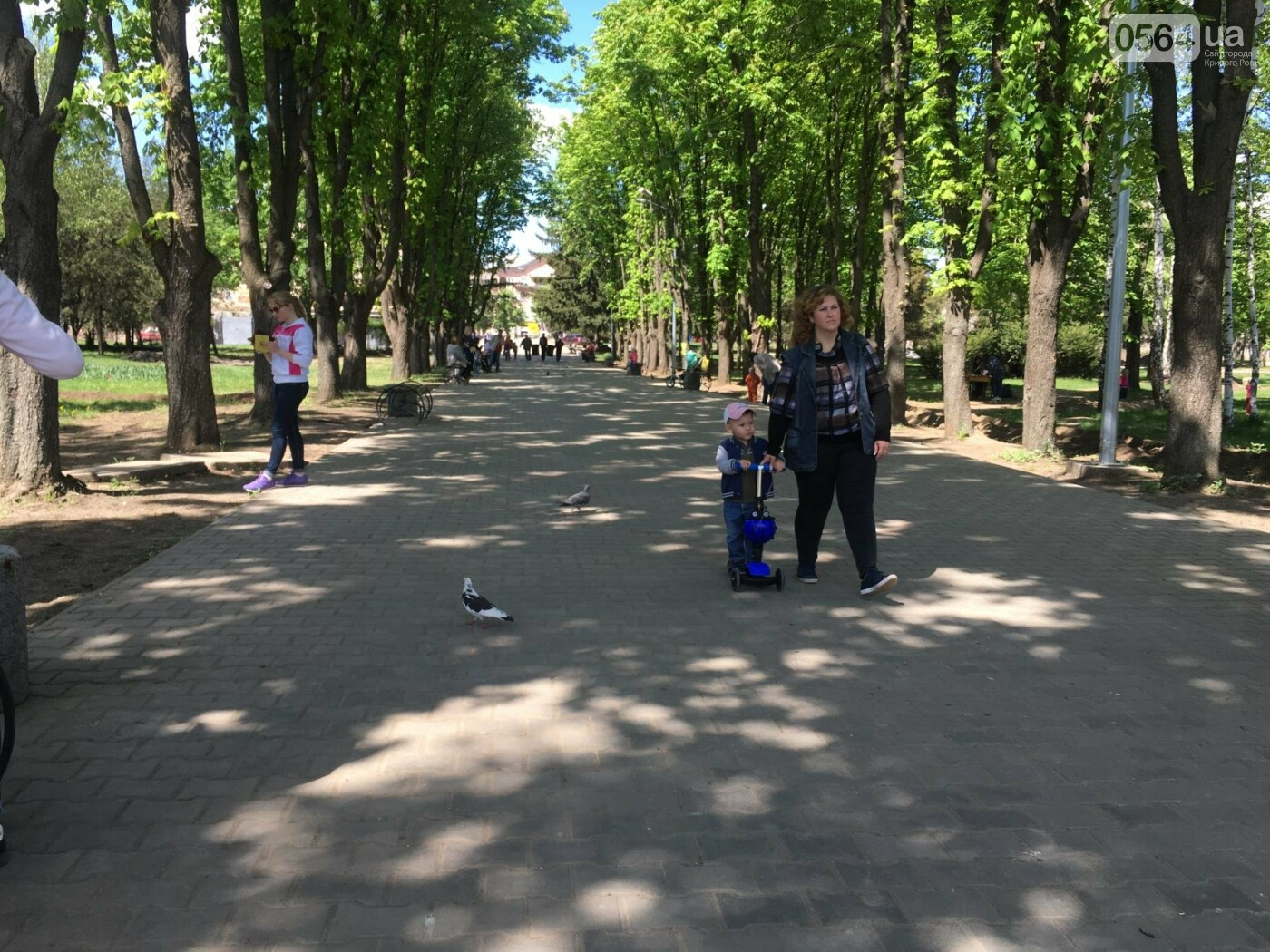 """""""В Европу без мусора!"""": криворожане помогли подготовить парк к Еврофесту (ФОТО), фото-55"""