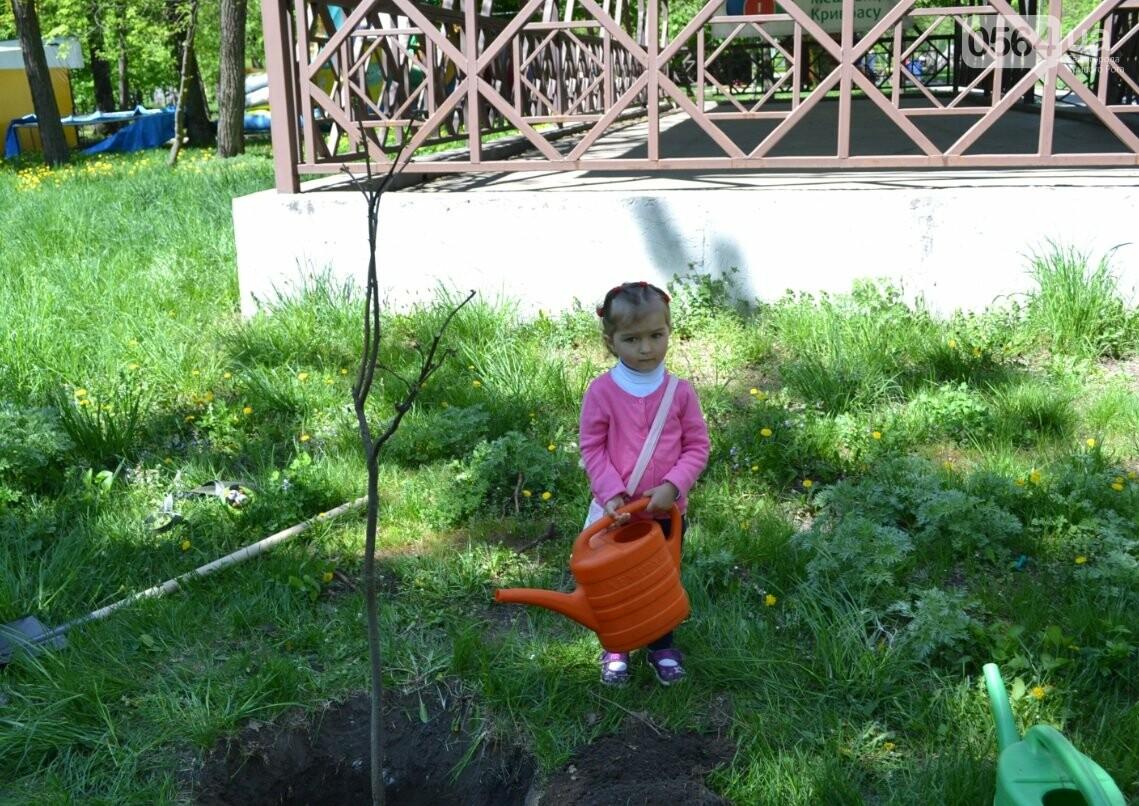В парке Мершавцева криворожане посадили экзотические деревья (ФОТО), фото-1