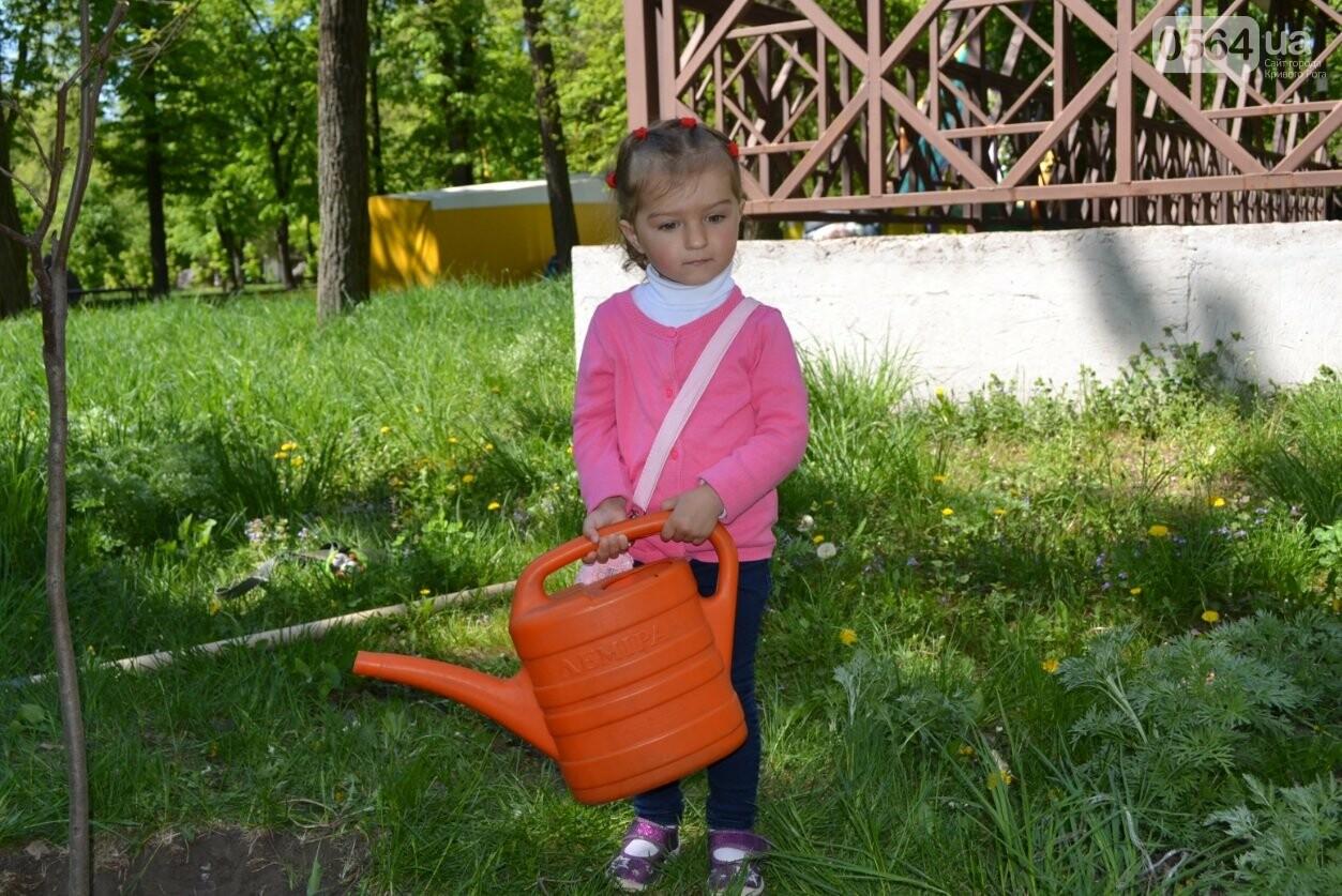 В парке Мершавцева криворожане посадили экзотические деревья (ФОТО), фото-2