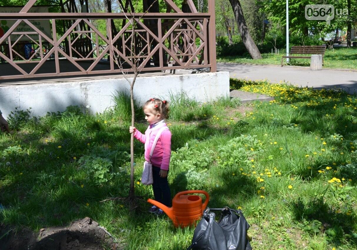 В парке Мершавцева криворожане посадили экзотические деревья (ФОТО), фото-10