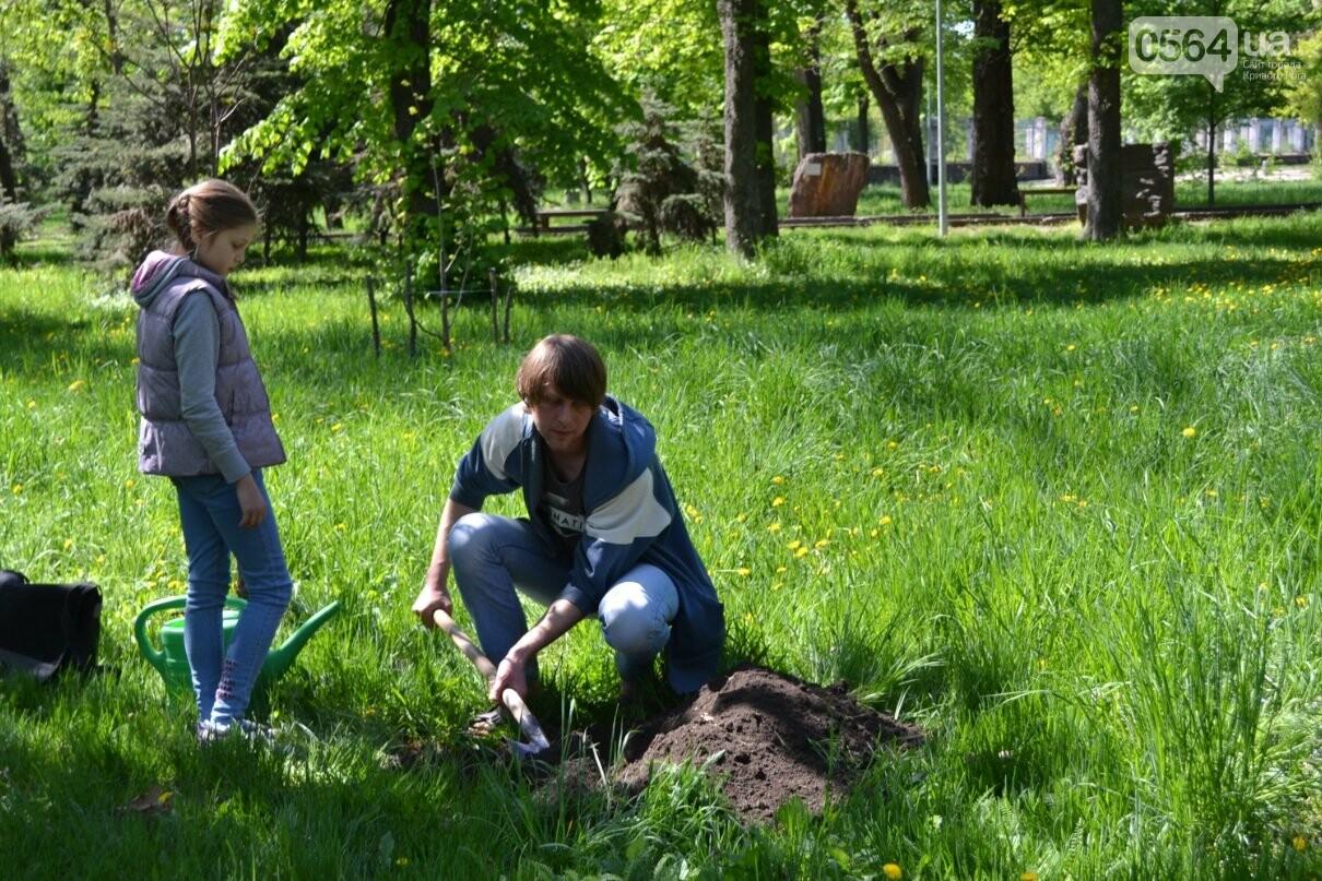 В парке Мершавцева криворожане посадили экзотические деревья (ФОТО), фото-6