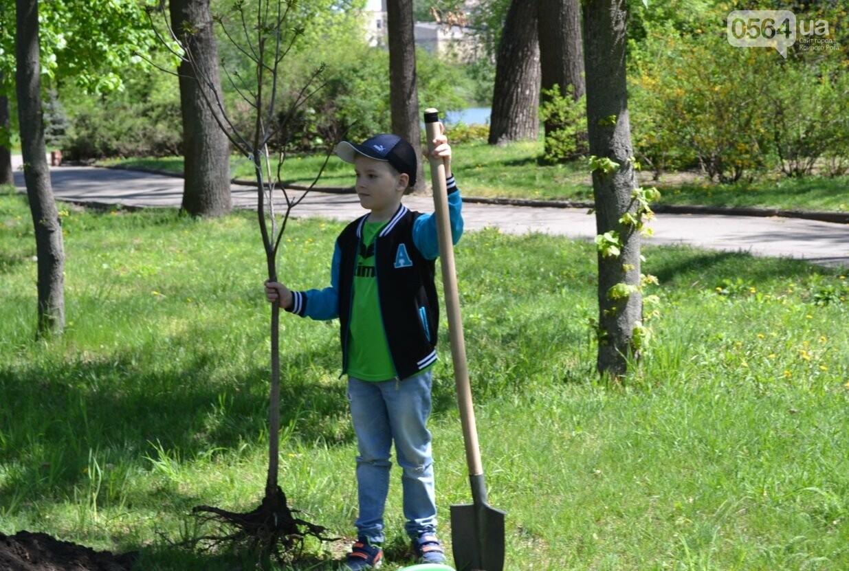 В парке Мершавцева криворожане посадили экзотические деревья (ФОТО), фото-3
