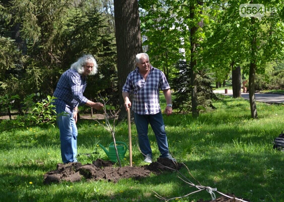 В парке Мершавцева криворожане посадили экзотические деревья (ФОТО), фото-9