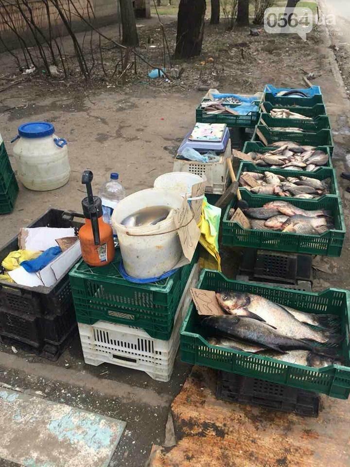 В Кривом Роге пытаются убрать с улиц торговцев колбасой и рыбой (ФОТО), фото-13