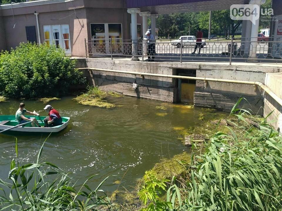 В Кривом Роге расчищали водное зеркало от мусора, - ФОТО, фото-6