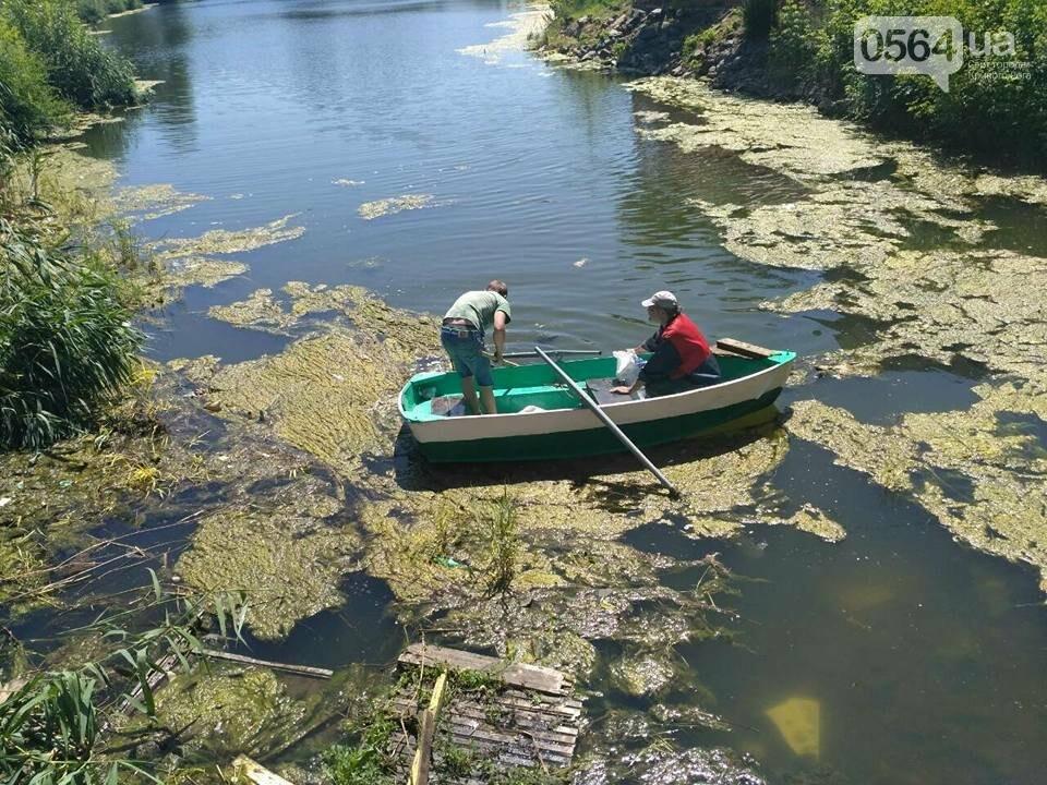 В Кривом Роге расчищали водное зеркало от мусора, - ФОТО, фото-2