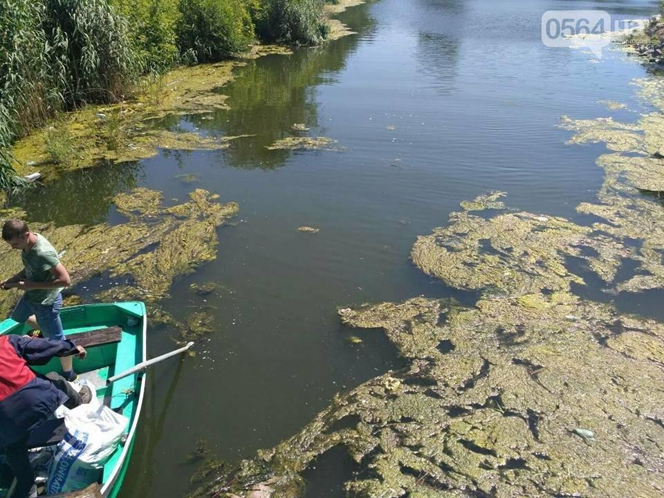 В Кривом Роге расчищали водное зеркало от мусора, - ФОТО, фото-4