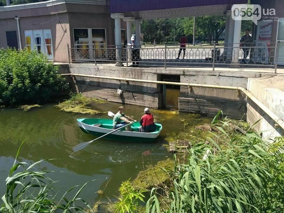 В Кривом Роге расчищали водное зеркало от мусора, - ФОТО, фото-5