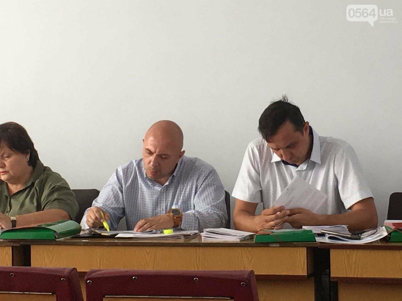В Кривом Роге хотят управление благоустройства горисполкома расширить до департамента, фото-5