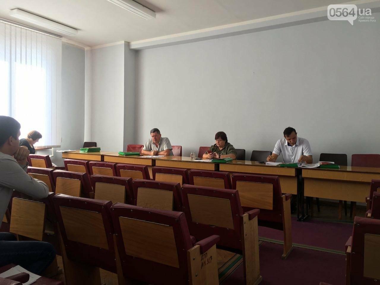 В Кривом Роге хотят управление благоустройства горисполкома расширить до департамента, фото-9