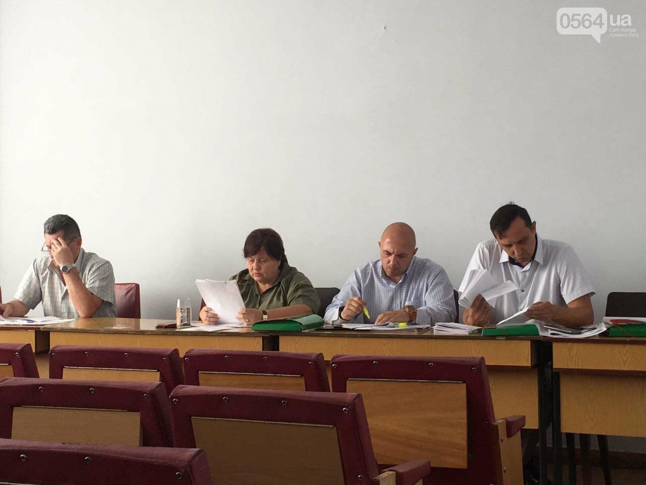 В Кривом Роге хотят управление благоустройства горисполкома расширить до департамента, фото-10