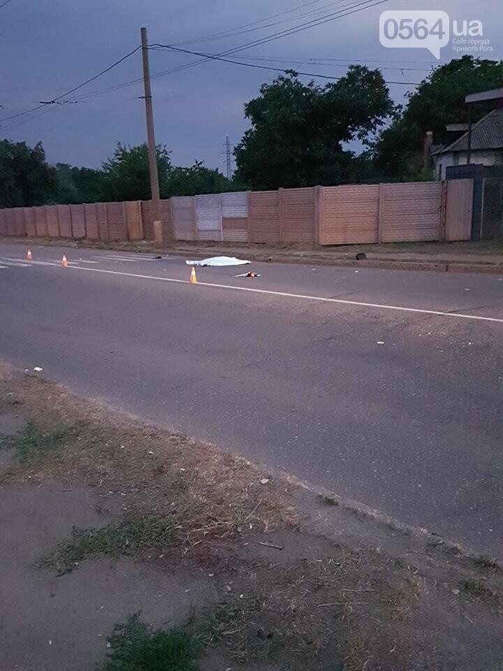 В Кривом Роге в результате жуткого ДТП погибли 2 девушки, - ФОТО, ВИДЕО 18+, фото-2