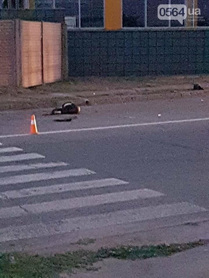В Кривом Роге в результате жуткого ДТП погибли 2 девушки, - ФОТО, ВИДЕО 18+, фото-3