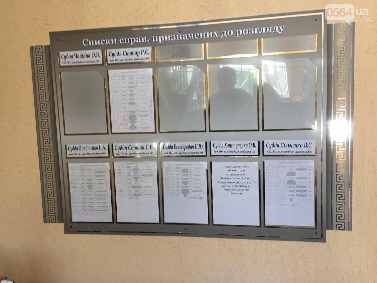 В Кривом Роге - очередной отвод в деле о сожженной малышке Амине Менго, - ФОТО, фото-1