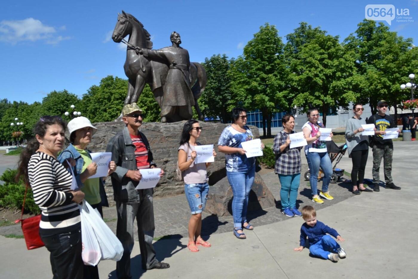 Криворожане вышли на всемирную акцию FreeSentsov, - ФОТО, ВИДЕО, фото-18