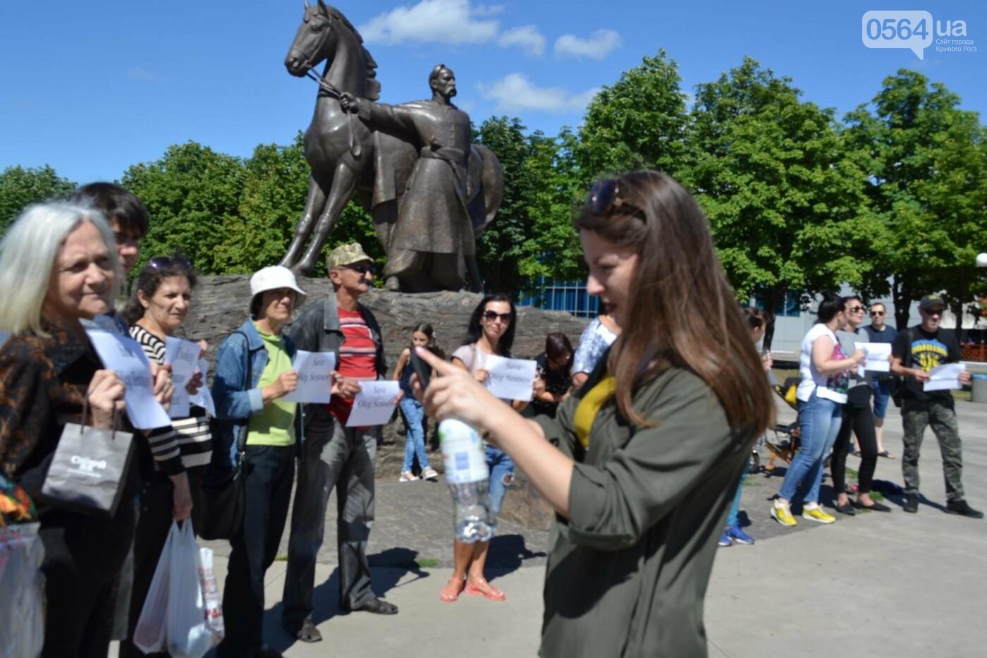 Криворожане вышли на всемирную акцию FreeSentsov, - ФОТО, ВИДЕО, фото-14