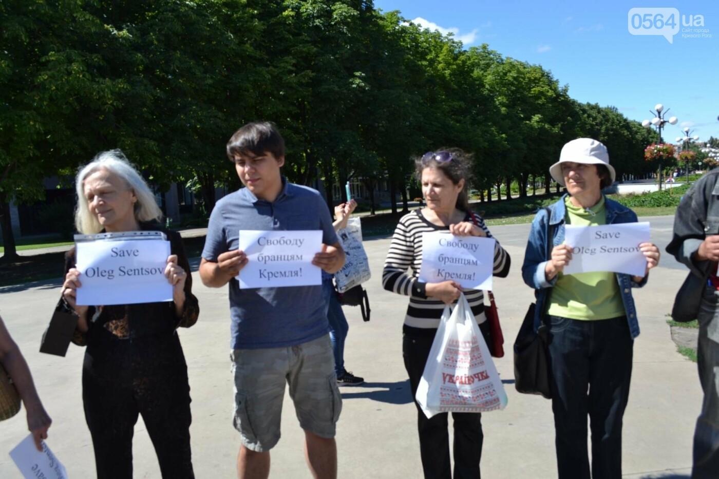 Криворожане вышли на всемирную акцию FreeSentsov, - ФОТО, ВИДЕО, фото-13