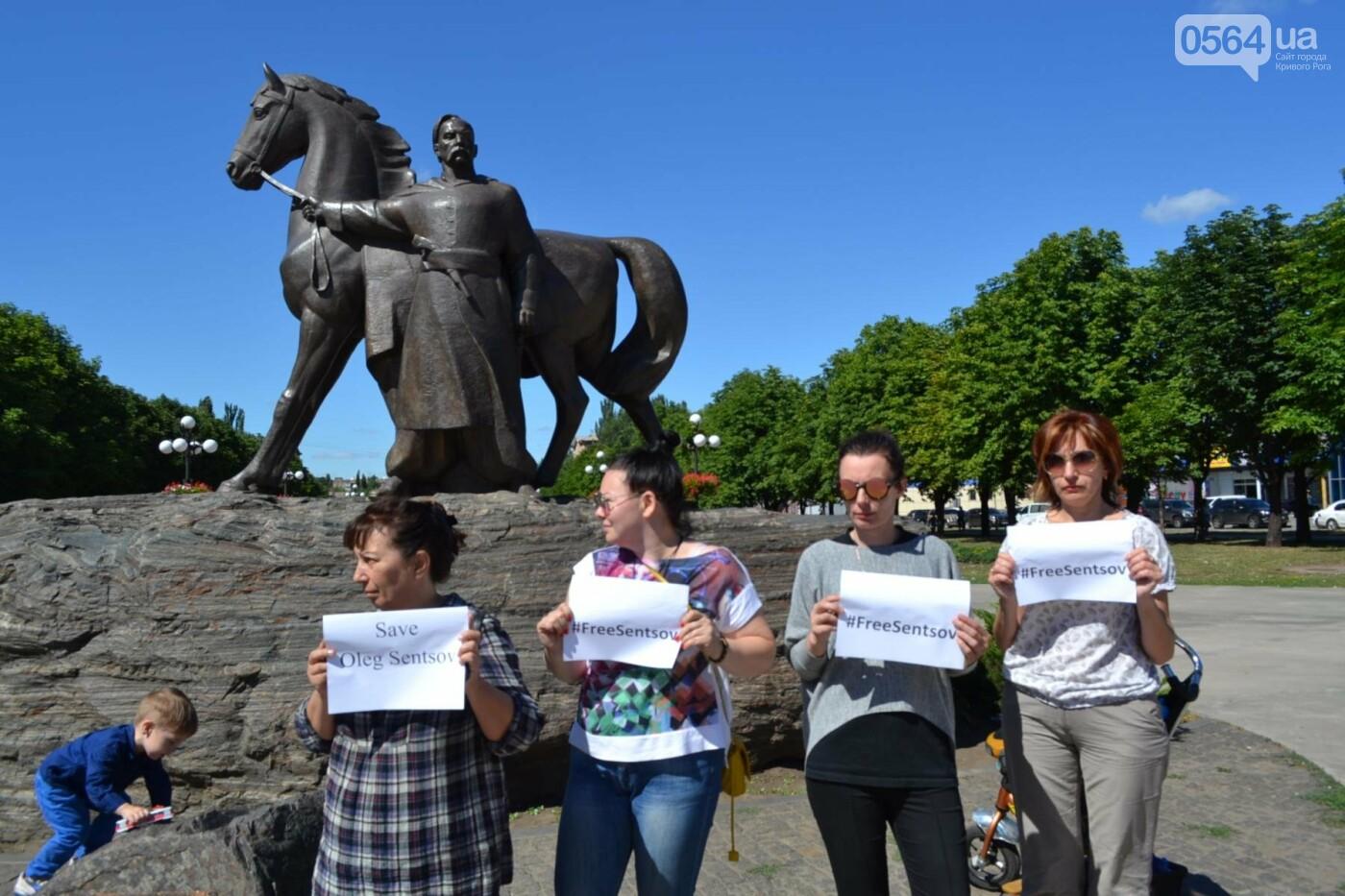 Криворожане вышли на всемирную акцию FreeSentsov, - ФОТО, ВИДЕО, фото-17