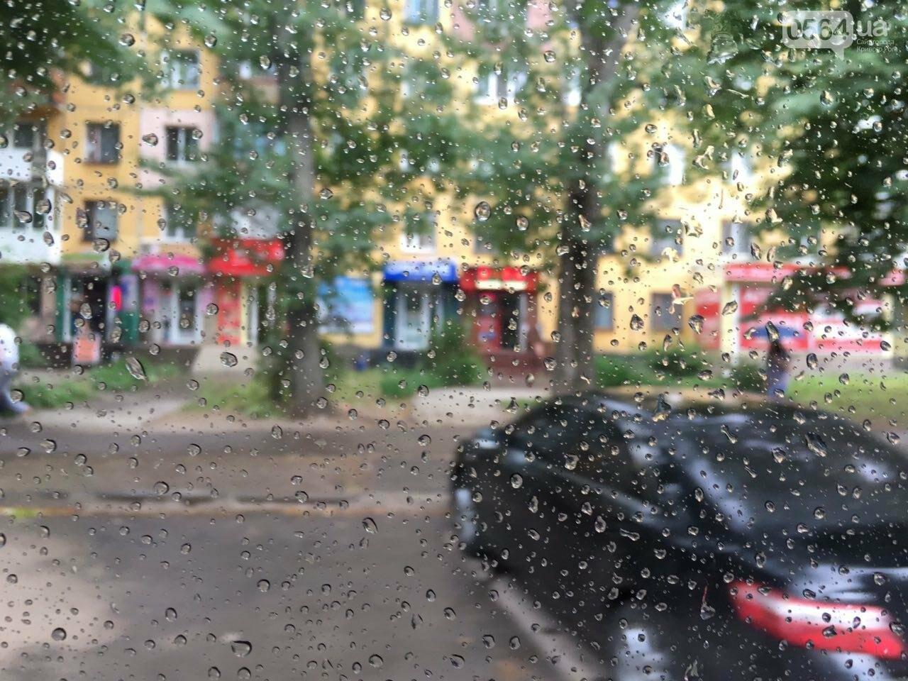 Маршрут дождя: В Кривом Роге в одних районах льет ливень, в других ярко светит солнце, - ФОТО, фото-10
