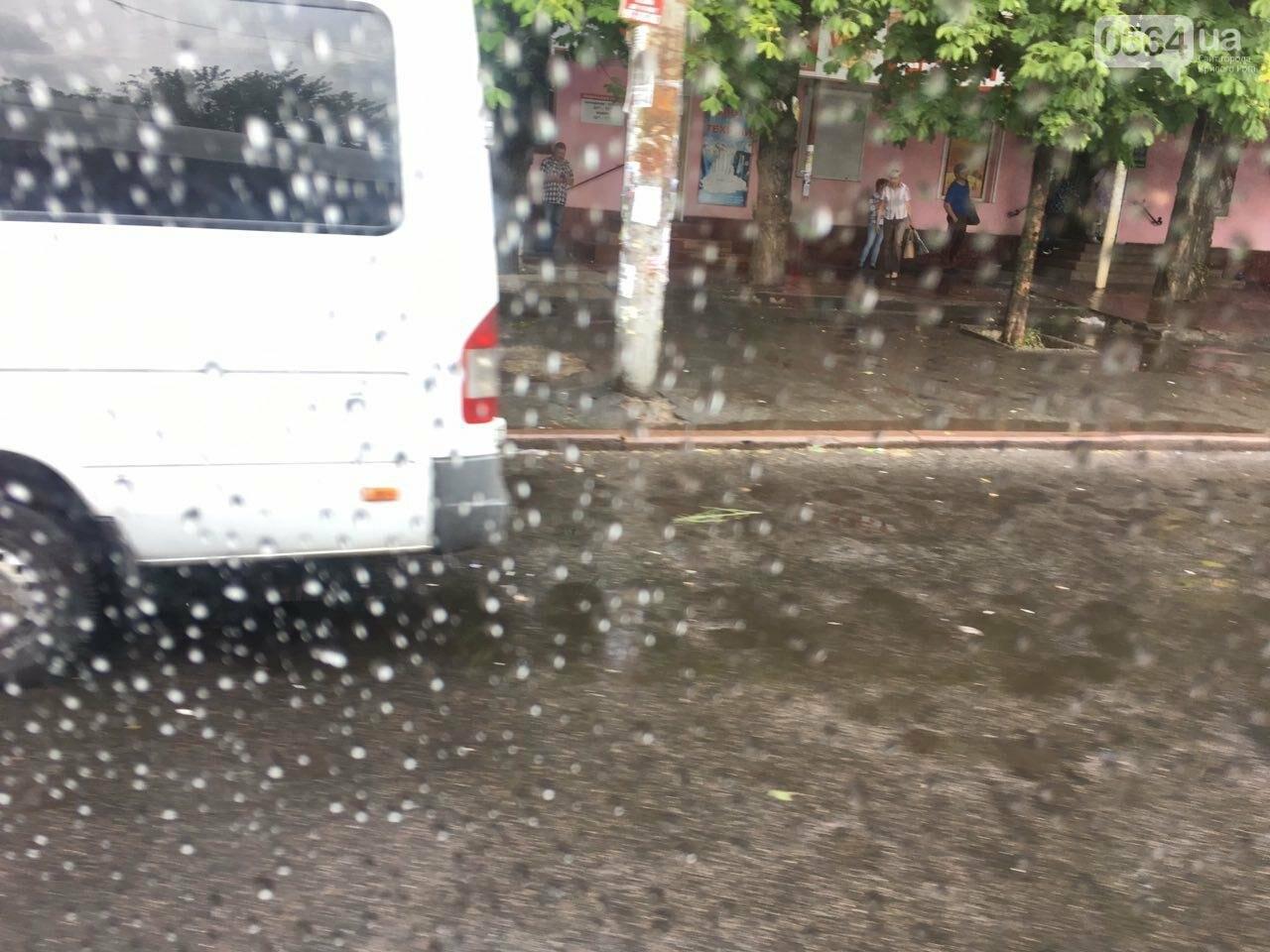 Маршрут дождя: В Кривом Роге в одних районах льет ливень, в других ярко светит солнце, - ФОТО, фото-7