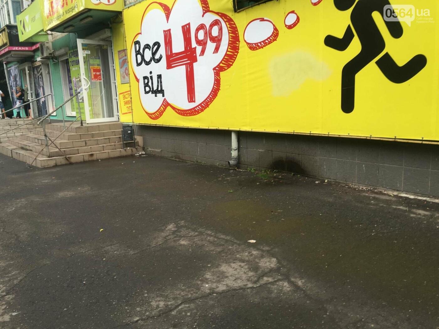 """""""Ждут штраф?"""": В Кривом Роге бизнесмены не спешат устанавливать урны возле своих магазинов, - ФОТО, фото-17"""