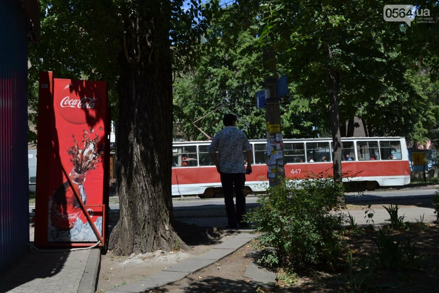 """В Кривом Роге активисты обнаружили очередную """"наливайку"""", а полицейский назвал это """"фигней"""", - ФОТО, ВИДЕО, фото-26"""