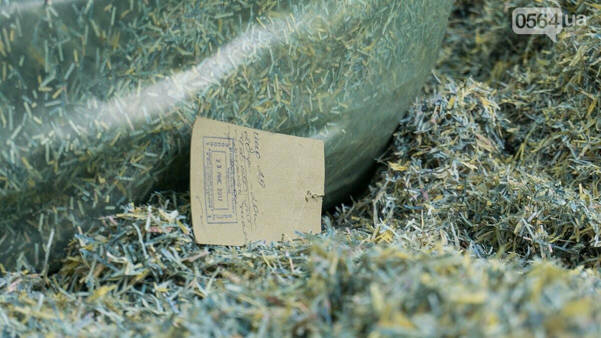 В лесополосе на Криворожском шоссе нашли десятки мешков с гривнами, - ФОТО, ВИДЕО, фото-3