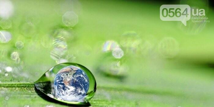 Состояние окружающей среды касается всех, фото-1