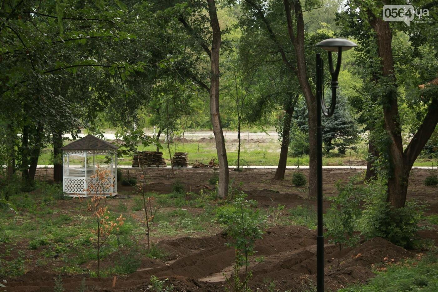 НАБУ по запросу нардепа Усова проверяет реконструкцию в Гданцевском парке Кривого Рога, фото-6
