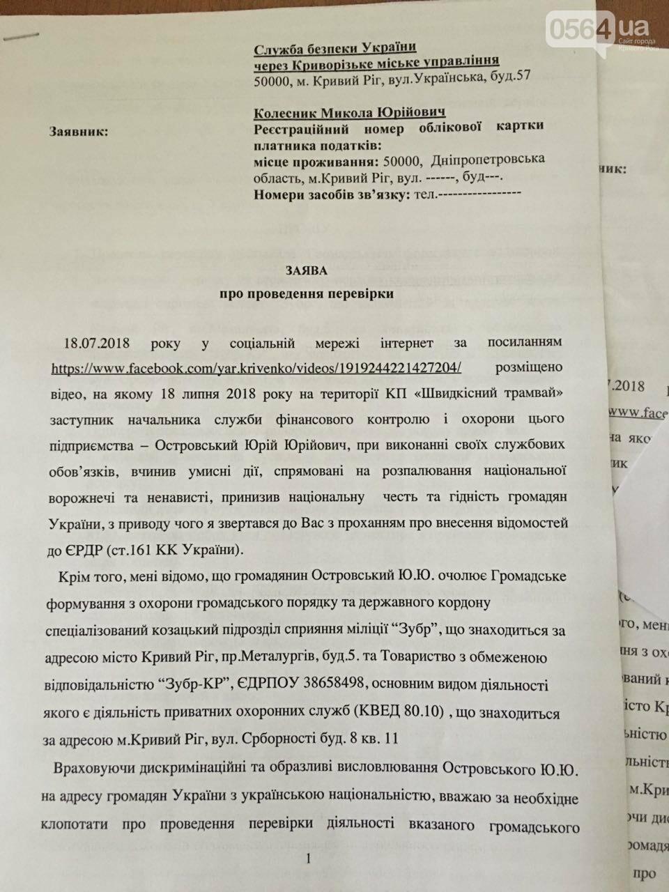 Криворожане передали в СБУ заявление с требованием проверить организации, которые возглавлял Островский, - ФОТО, фото-7
