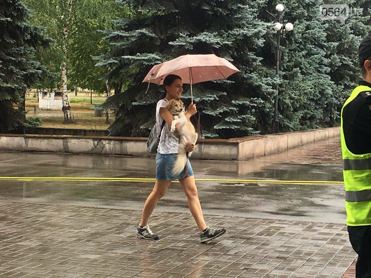 """В Кривом Роге под дождем проходит зоозащитная акция """"Украина - не живодерня!"""", - ФОТО, ВИДЕО, фото-3"""