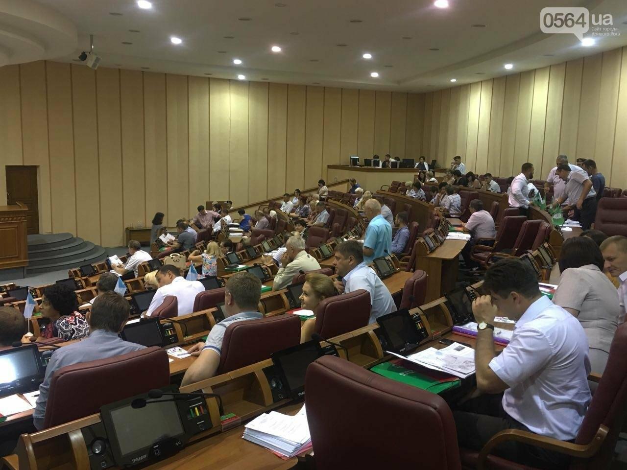 Криворожский горсовет не поддержал петицию о запрете Марша равенства, - ФОТО, фото-9