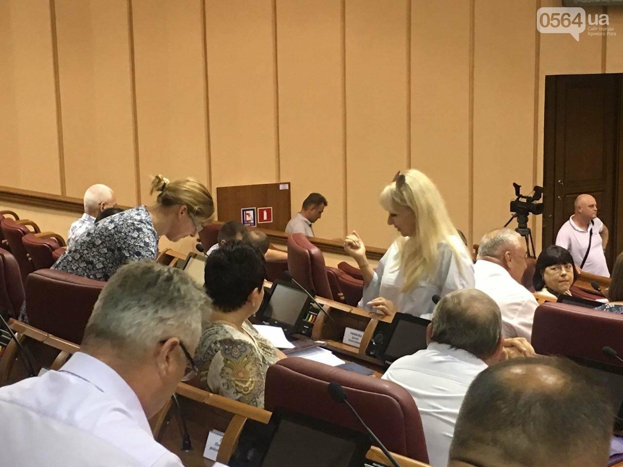 Криворожский горсовет не поддержал петицию о запрете Марша равенства, - ФОТО, фото-3