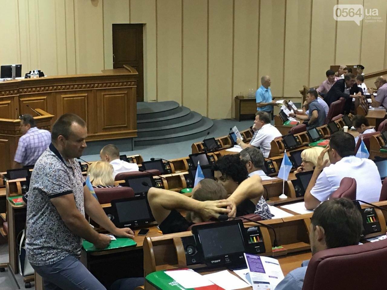 Криворожский горсовет не поддержал петицию о запрете Марша равенства, - ФОТО, фото-11