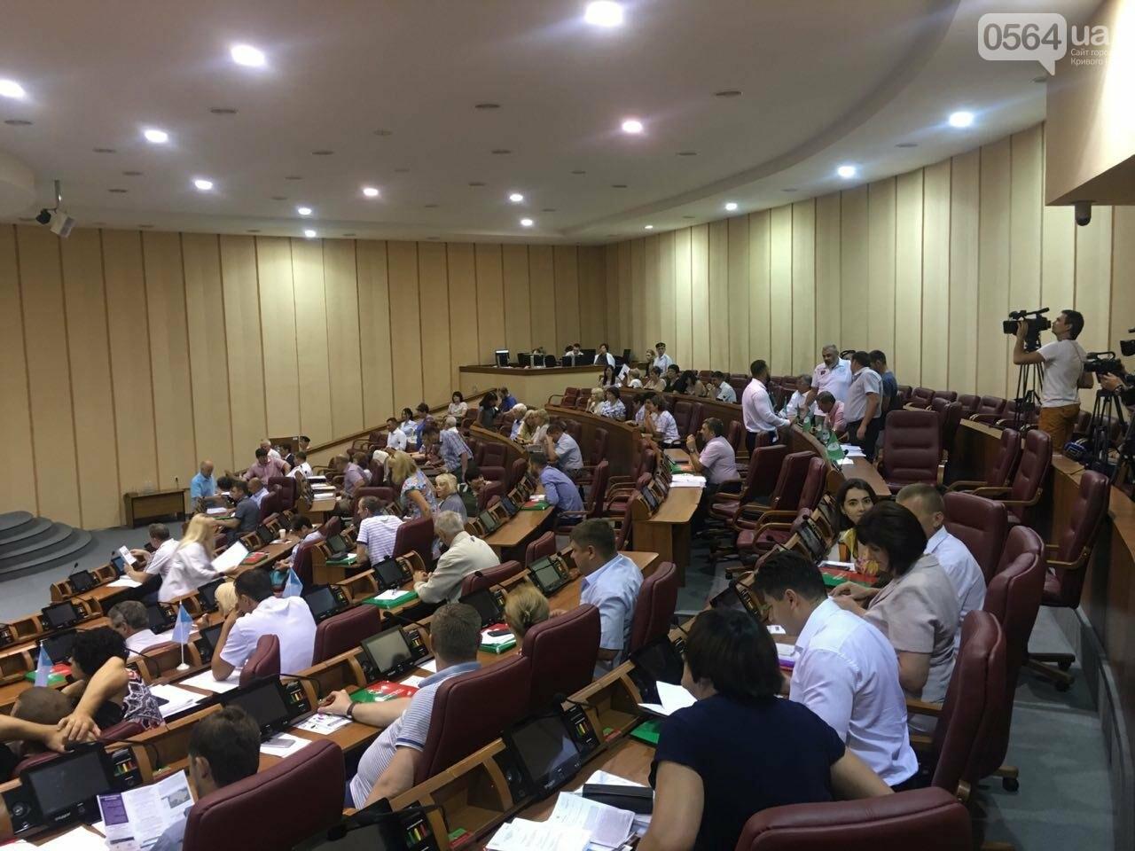 Криворожский горсовет не поддержал петицию о запрете Марша равенства, - ФОТО, фото-12