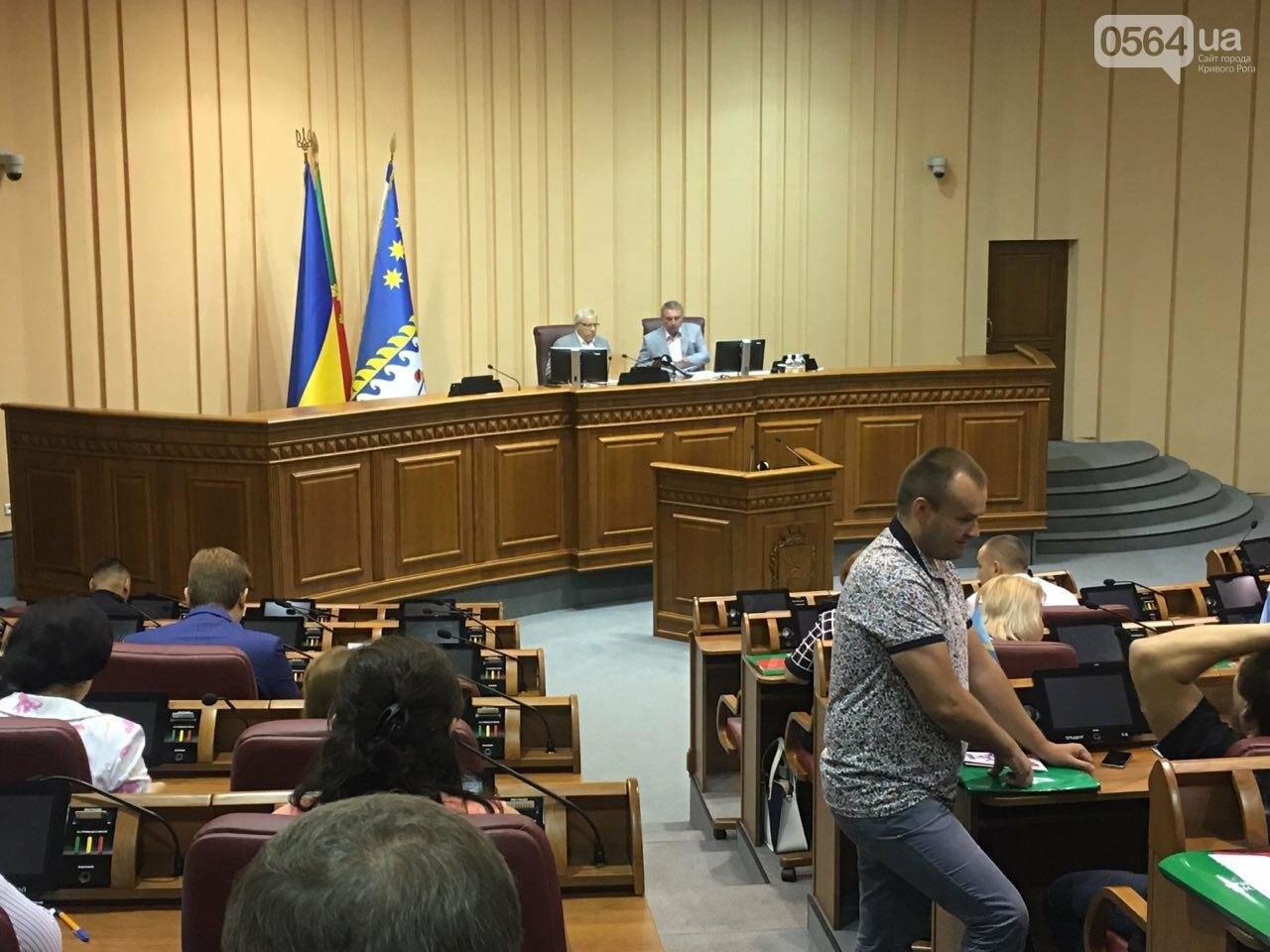Криворожский горсовет не поддержал петицию о запрете Марша равенства, - ФОТО, фото-13