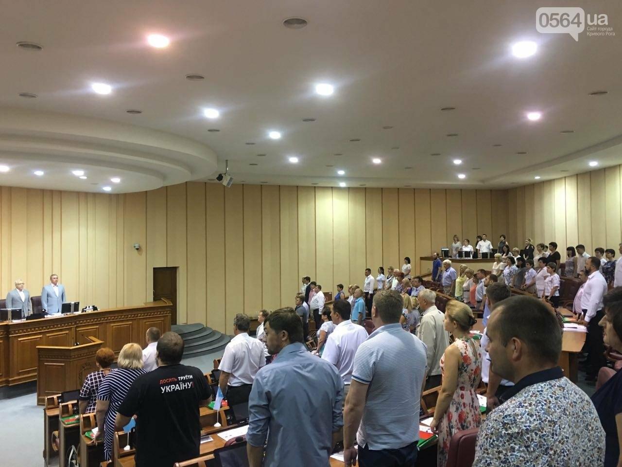 Криворожский горсовет не поддержал петицию о запрете Марша равенства, - ФОТО, фото-14