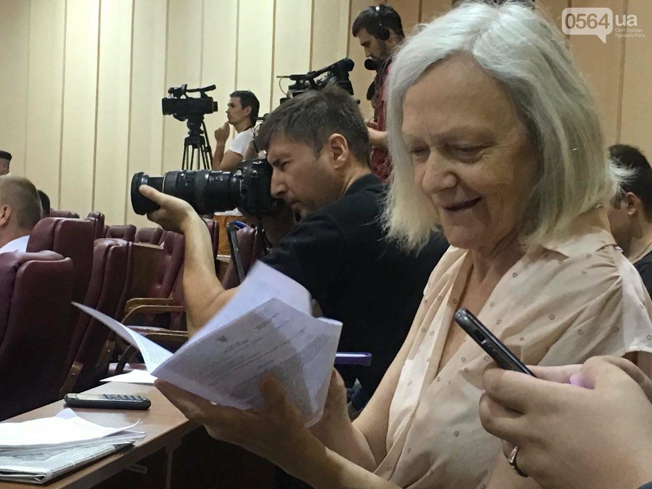Криворожский горсовет не поддержал петицию о запрете Марша равенства, - ФОТО, фото-6