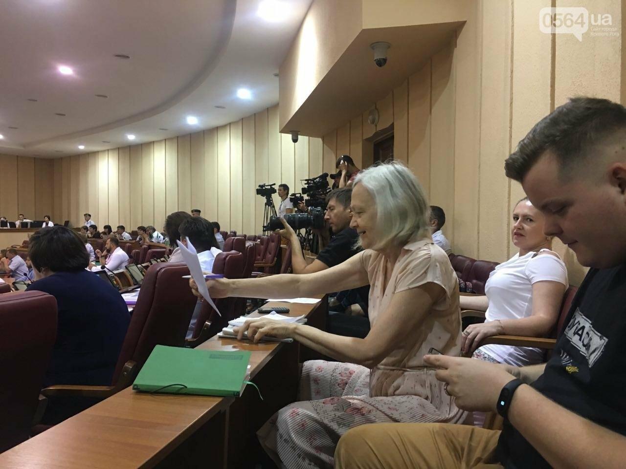 Криворожский горсовет не поддержал петицию о запрете Марша равенства, - ФОТО, фото-7