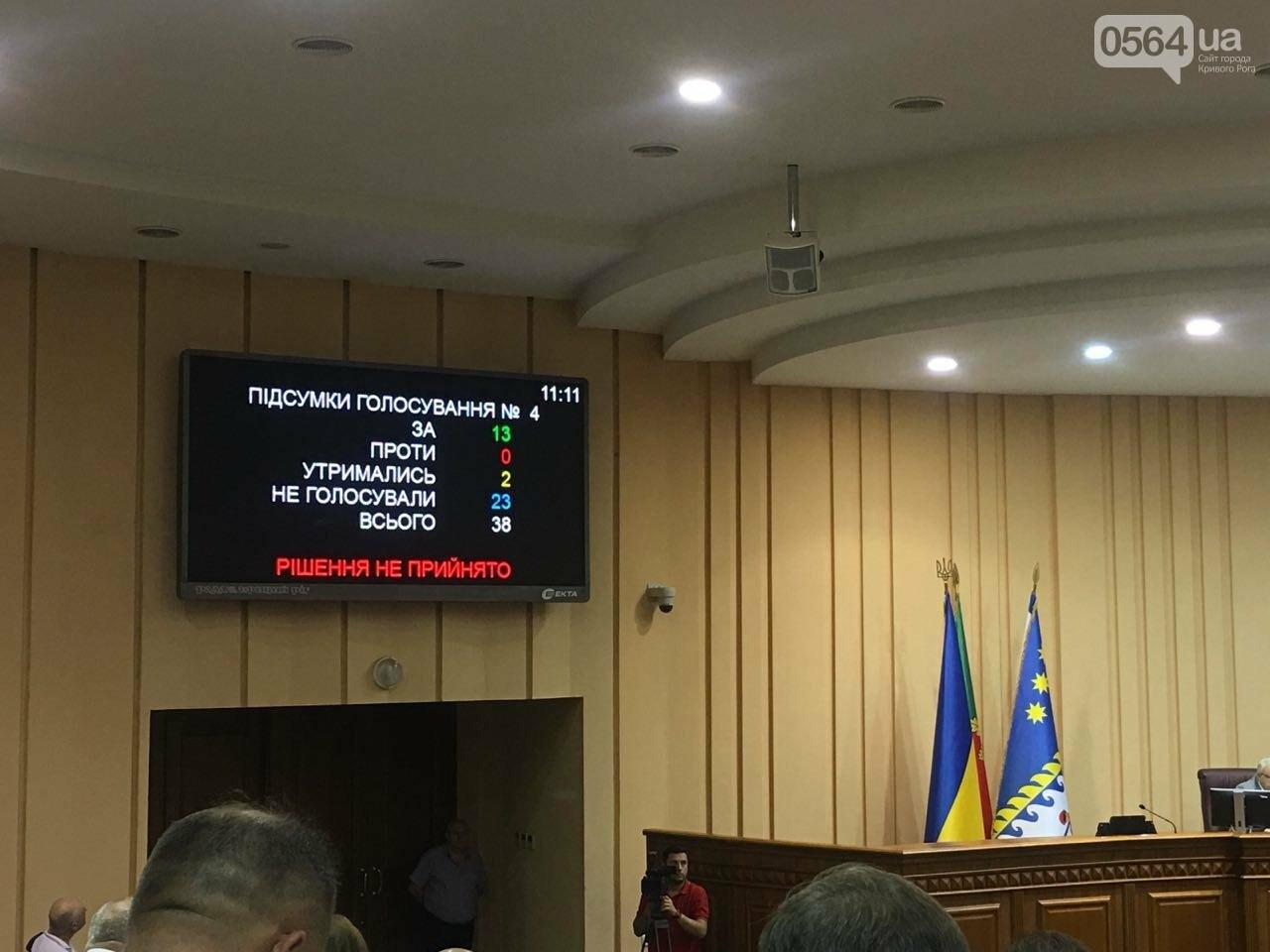 Криворожский горсовет не поддержал петицию о запрете Марша равенства, - ФОТО, фото-1