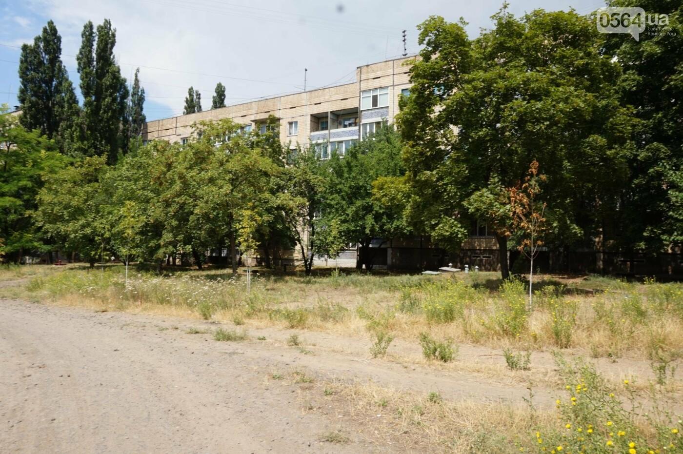 """""""Поле чудес"""": криворожане не могут добиться помощи властей, чтобы снести незаконные постройки и создать сквер, - ФОТО, фото-33"""