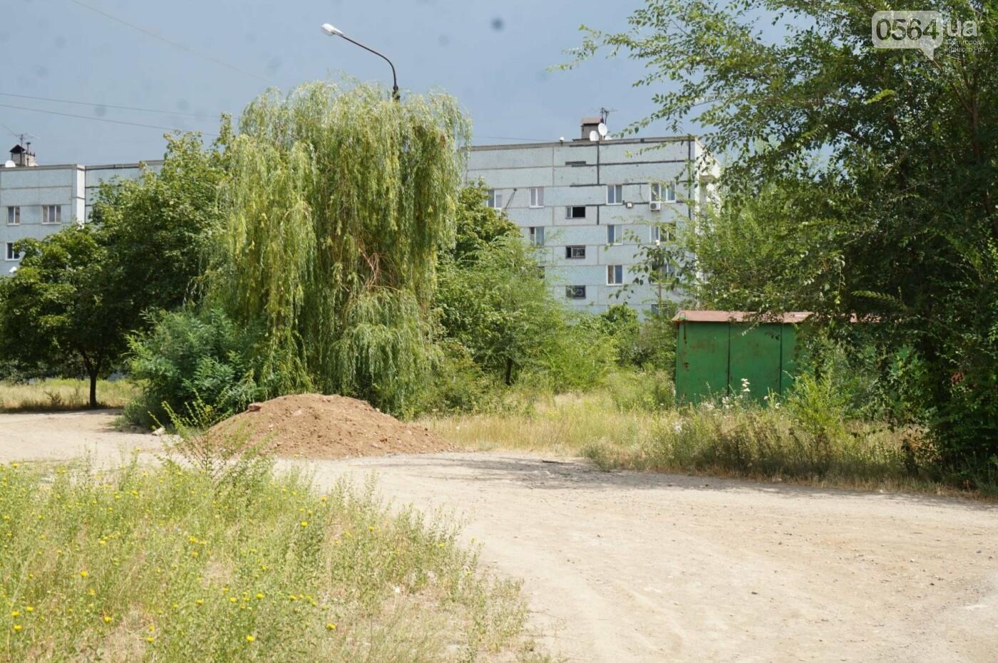 """""""Поле чудес"""": криворожане не могут добиться помощи властей, чтобы снести незаконные постройки и создать сквер, - ФОТО, фото-48"""