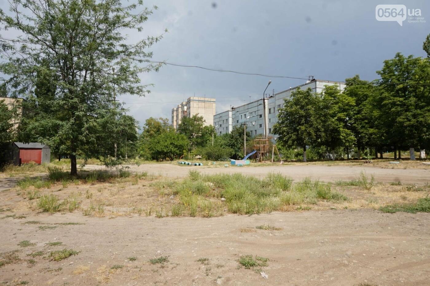 """""""Поле чудес"""": криворожане не могут добиться помощи властей, чтобы снести незаконные постройки и создать сквер, - ФОТО, фото-29"""