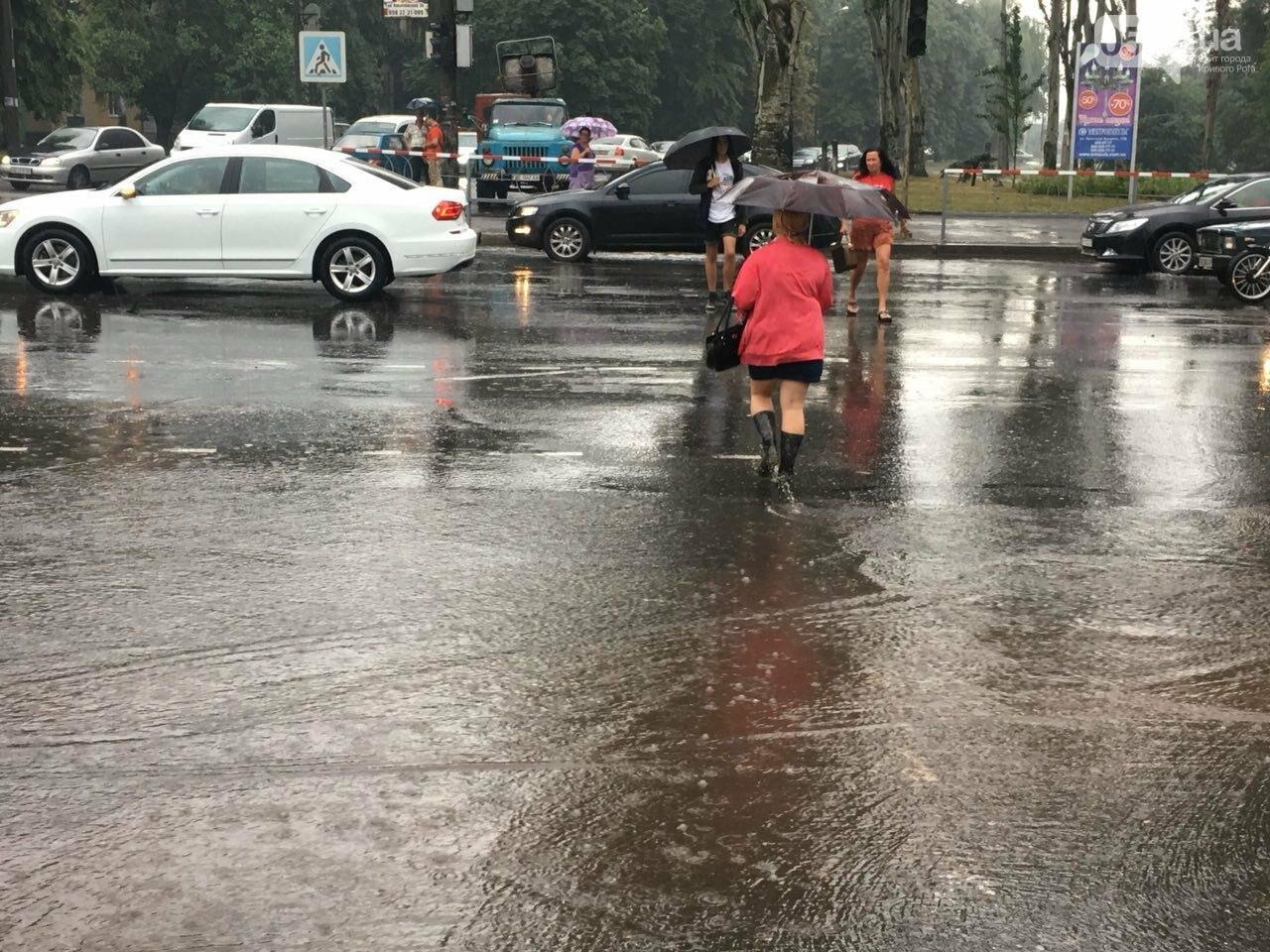 В Кривом Роге под дождем на перекрестке столкнулись иномарка и ВАЗ, - ФОТО, фото-16