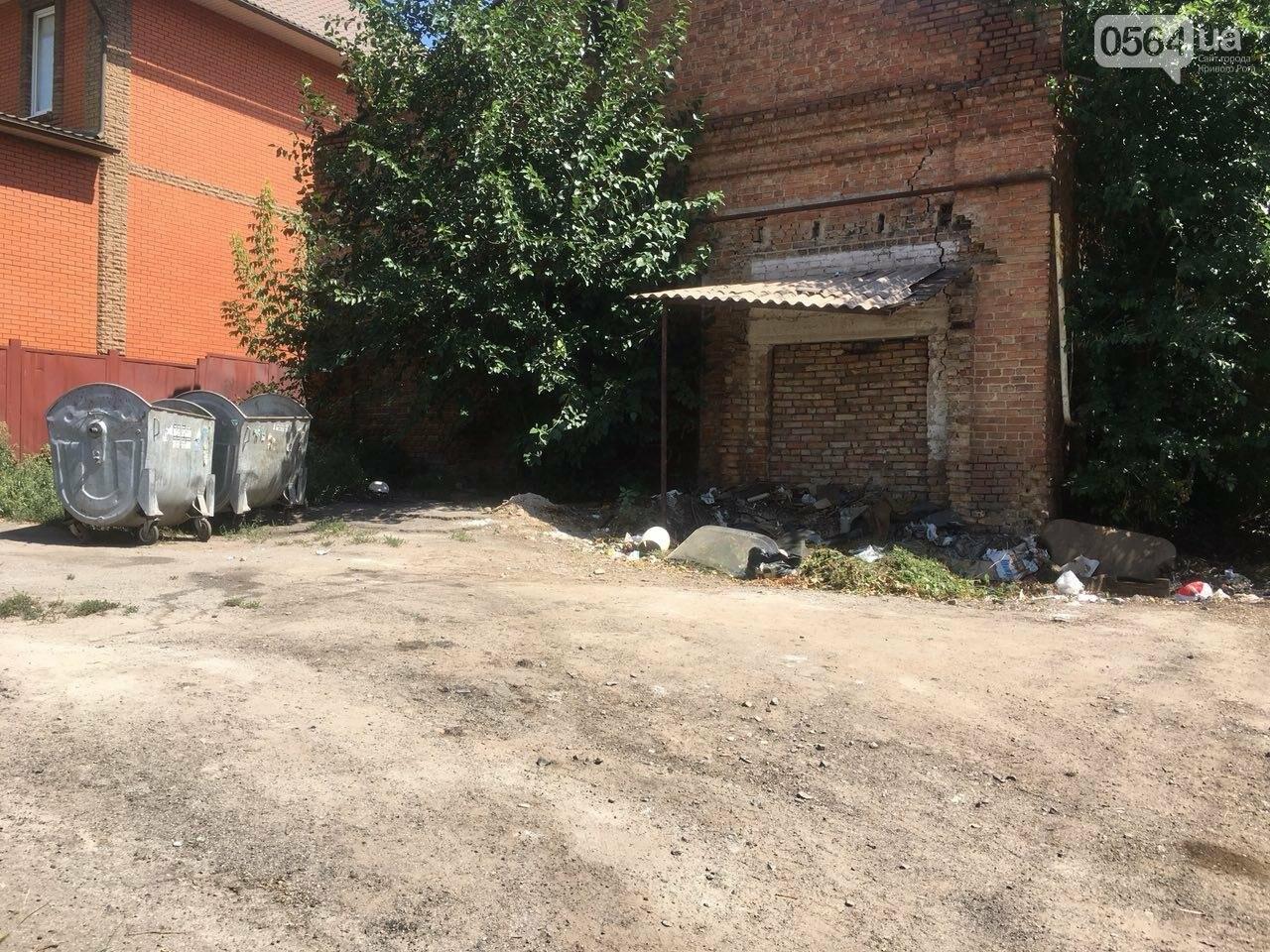 Криворожане помогли бездомной пожилой женщине, проживавшей за мусорными контейнерами, - ФОТО, ВИДЕО , фото-9