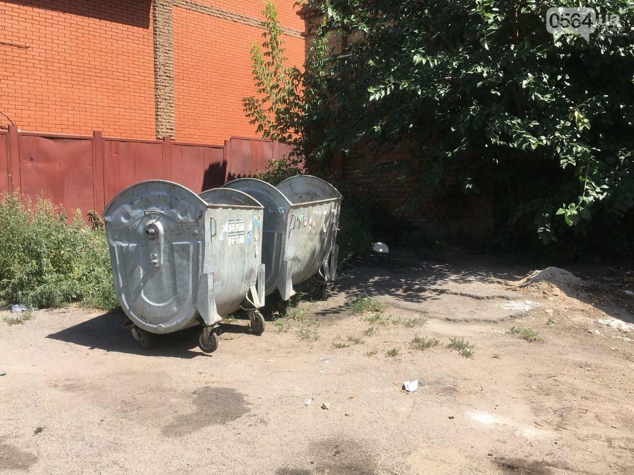 Криворожане помогли бездомной пожилой женщине, проживавшей за мусорными контейнерами, - ФОТО, ВИДЕО , фото-10