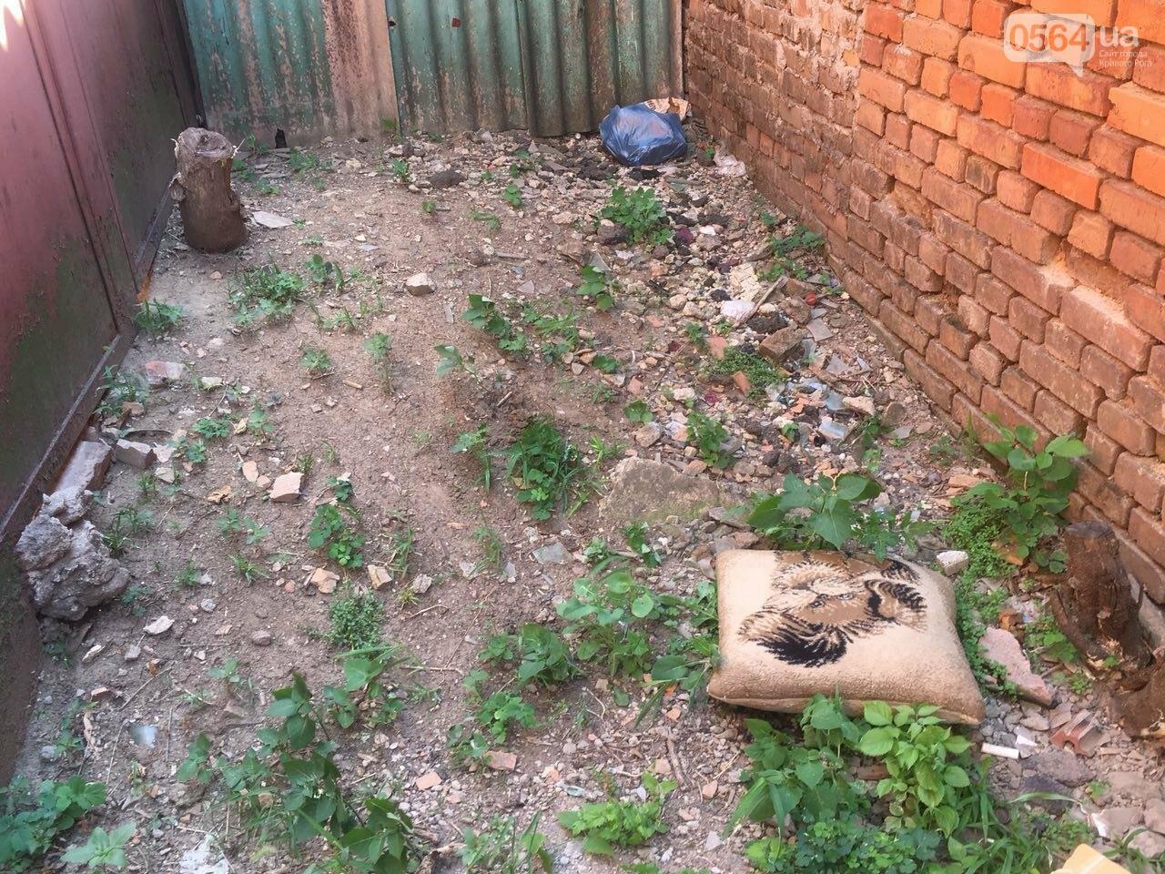 Криворожане помогли бездомной пожилой женщине, проживавшей за мусорными контейнерами, - ФОТО, ВИДЕО , фото-14