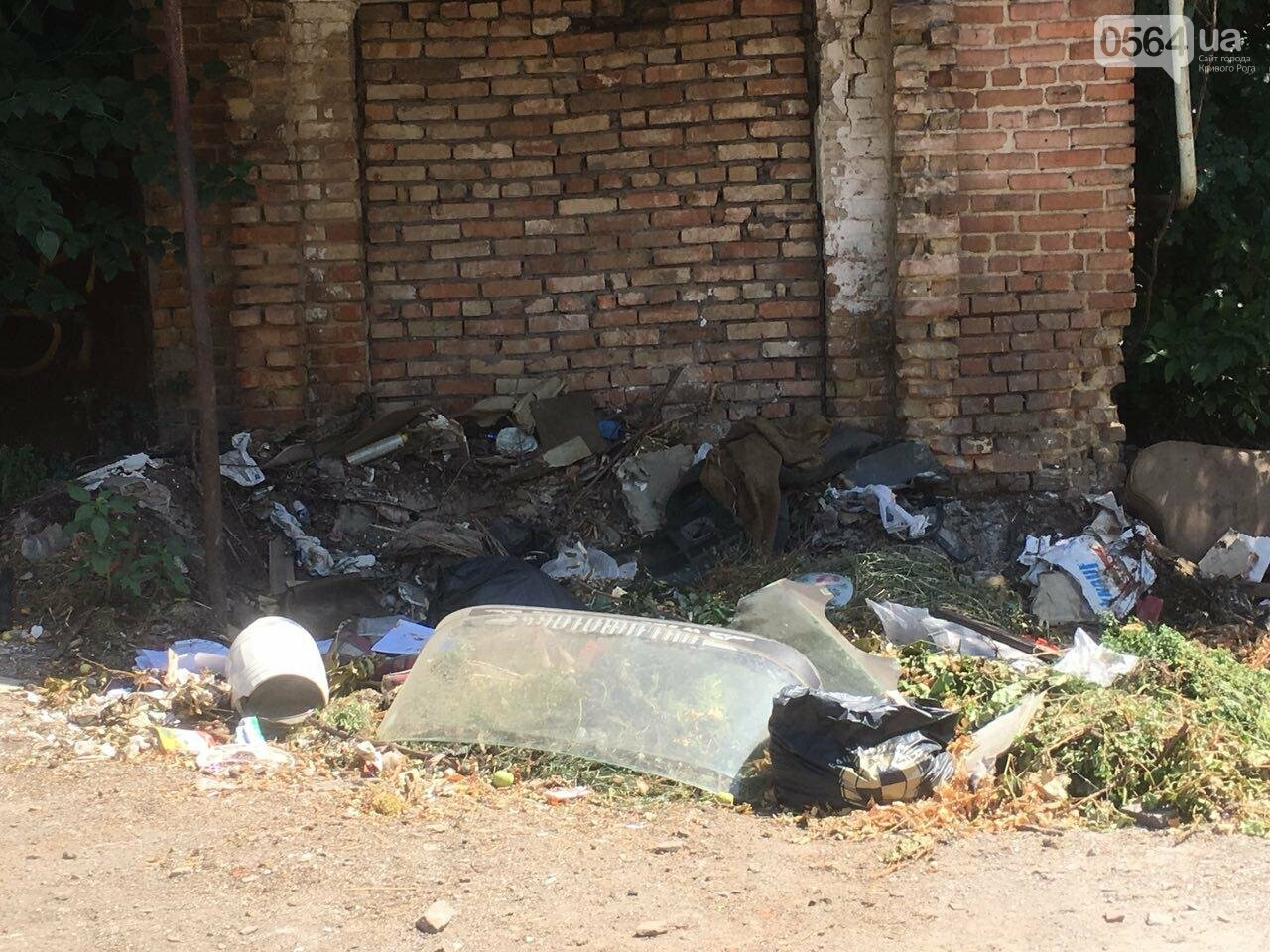 Криворожане помогли бездомной пожилой женщине, проживавшей за мусорными контейнерами, - ФОТО, ВИДЕО , фото-2